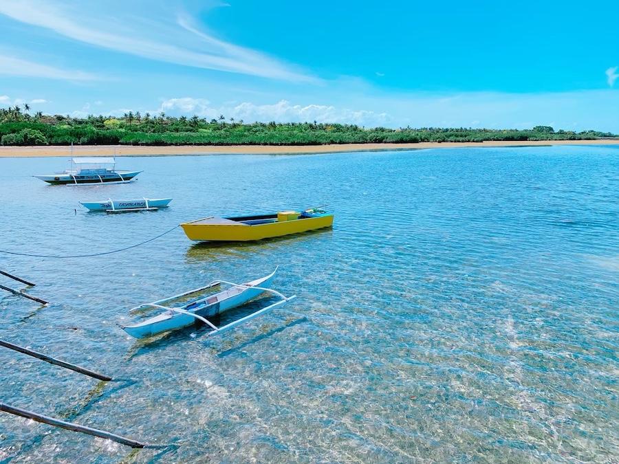 アイランドホッピング オランゴ島の海洋保護区でシュノーケル/パラセーリング体験&体験ダイビング可能<日本語ガイド/GoProレンタル>