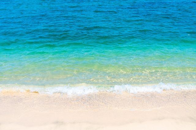 ウミガメとイワシトルネードで泳ぐ!サンゴ礁でシュノーケル体験&ホワイトビーチ<日本語ガイド/GoProレンタル>